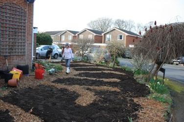 garden beds taking shape